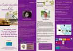 ombre_programme-2011b